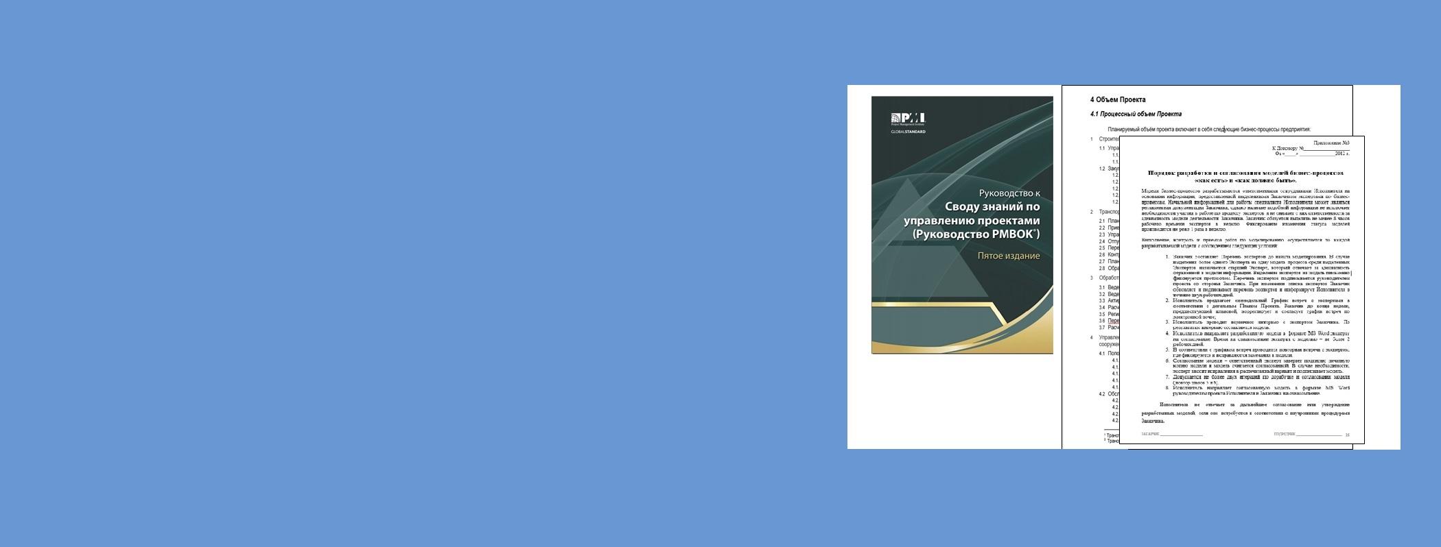 Практическое управление проектами по моделированию и совершенствованию бизнес-процессов